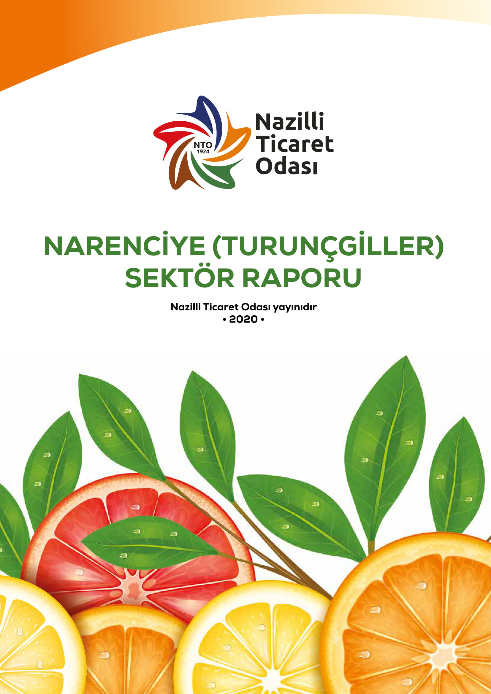 narenciye-sektor-raporu-01