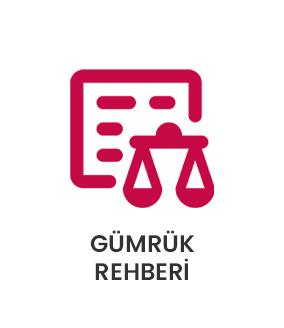 btn-gumruk-rehberi
